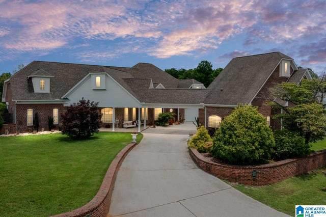 317 Highway 47 S, Columbiana, AL 35051 (MLS #1287777) :: Lux Home Group
