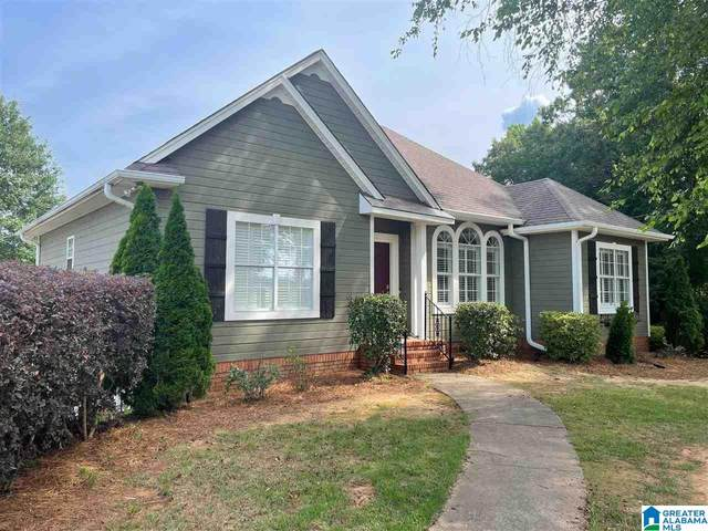 7201 Roper Tunnel Road, Trussville, AL 35173 (MLS #1288678) :: Lux Home Group