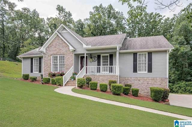 7811 White Oak Circle, Pinson, AL 35126 (MLS #1289554) :: Sargent McDonald Team