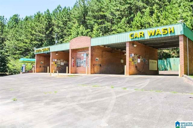 1315 Cogswell Avenue, Pell City, AL 35182 (MLS #1289648) :: The Natasha OKonski Team