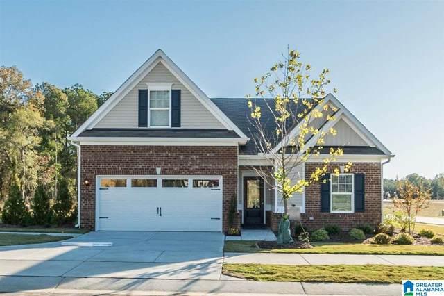 3190 Boardwalk Lane, Pell City, AL 35128 (MLS #1290010) :: Bailey Real Estate Group