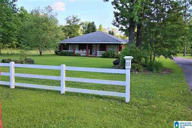 339 County Road 868, Montevallo, AL 35115 (MLS #1291677) :: Sargent McDonald Team