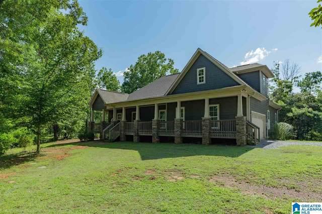 430 Hollow Drive, Harpersville, AL 35078 (MLS #1291993) :: Josh Vernon Group