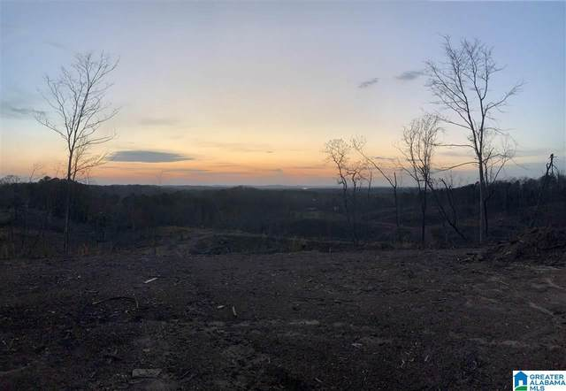 0 Cedar Springs Road 30.5 Ac., Weaver, AL 36277 (MLS #1292343) :: The Fred Smith Group   RealtySouth