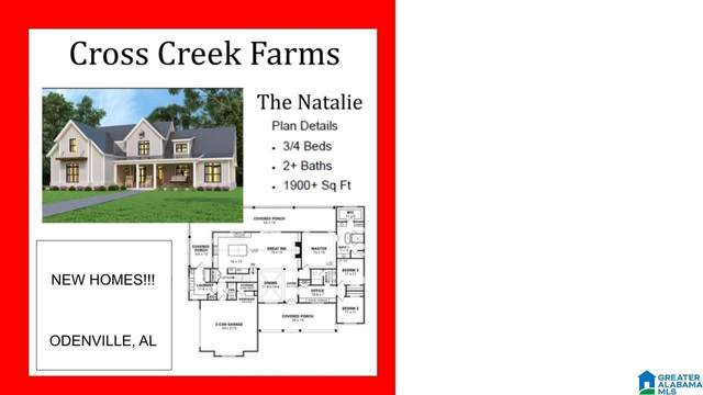 Cross Creek Drive, Odenville, AL 35120 (MLS #1293185) :: LocAL Realty