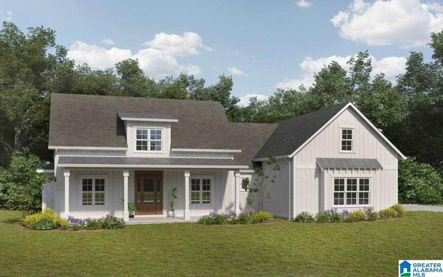736 Hickory Hollow, Chelsea, AL 35043 (MLS #1295679) :: Kellie Drozdowicz Group