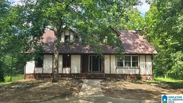 5294 Clay Palmerdale Road, Pinson, AL 35126 (MLS #1296544) :: Lux Home Group