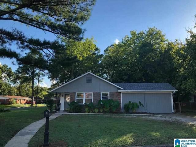 1101 Rayfield Drive, Birmingham, AL 35228 (MLS #1296827) :: Lux Home Group