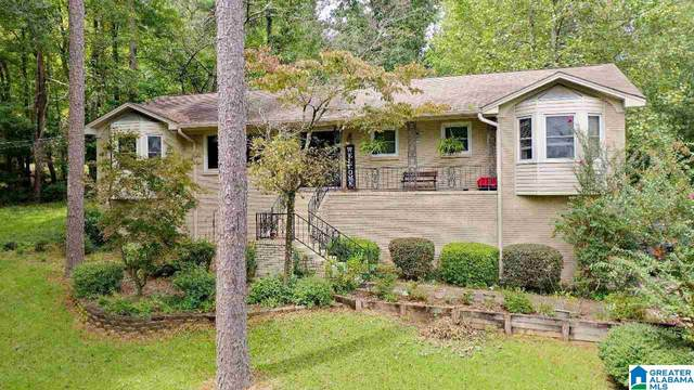 226 Snake Hill Road, Trussville, AL 35173 (MLS #1297665) :: LocAL Realty