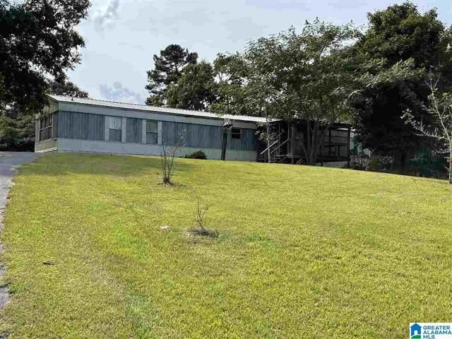 4465 Cook Springs Road, Pell City, AL 35125 (MLS #1297673) :: Lux Home Group