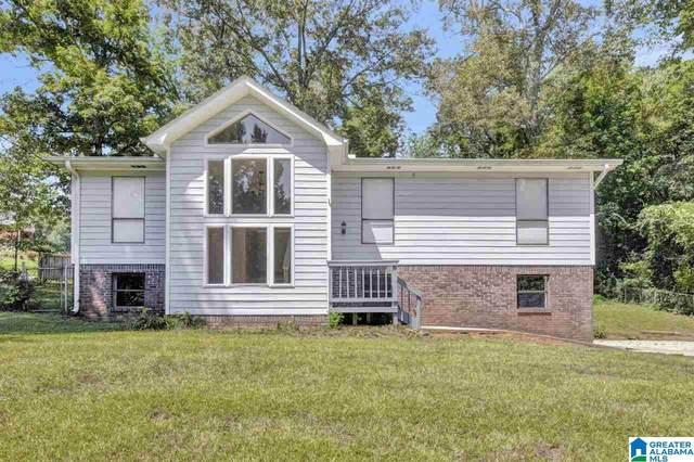 7032 Old Springville Road, Pinson, AL 35126 (MLS #1297862) :: Lux Home Group