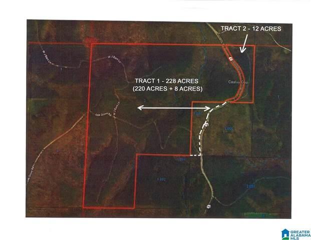 0 Highway 49 #0, Lineville, AL 36266 (MLS #1297896) :: LocAL Realty
