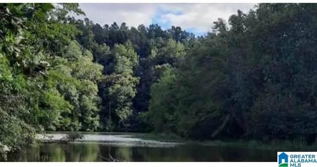 Buchanan Creek County Road 7 1.96 Acres, Wedowee, AL 36278 (MLS #1298627) :: Josh Vernon Group