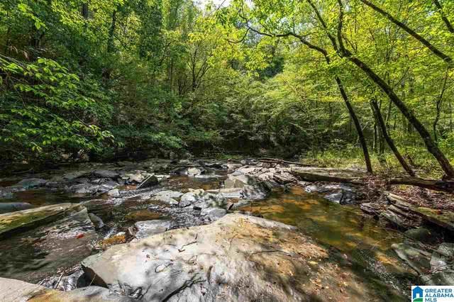 5720 Black Creek Drive Lot 4, Bessemer, AL 35022 (MLS #1298754) :: Kellie Drozdowicz Group