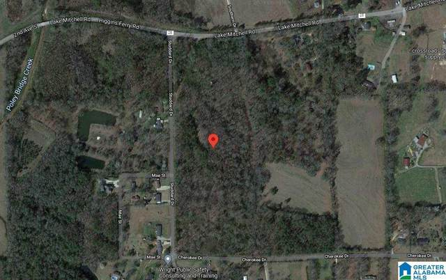 0 Lake Mitchell Road #0, Clanton, AL 35045 (MLS #1299026) :: LIST Birmingham