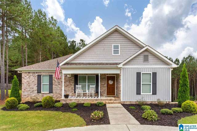 915 Magnolia Crest Lane, Odenville, AL 35120 (MLS #1299873) :: LIST Birmingham