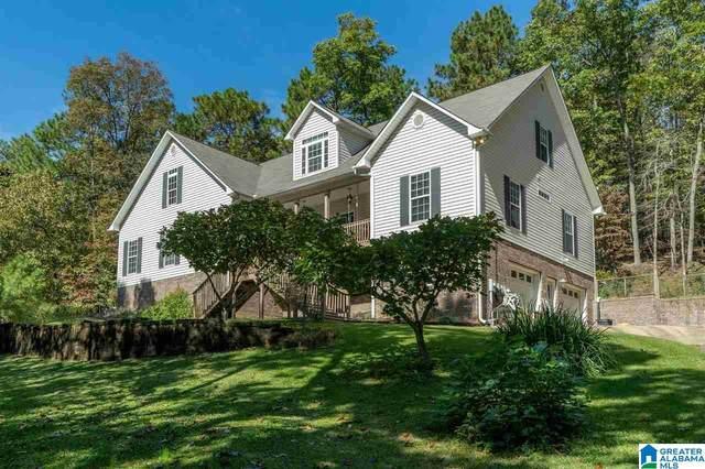 111 Pump House Road, Odenville, AL 35120 (MLS #1300673) :: Josh Vernon Group
