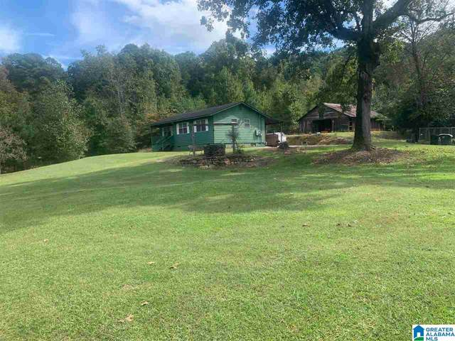 8931 Bluff Ridge Road, Mccalla, AL 35111 (MLS #1300794) :: EXIT Magic City Realty