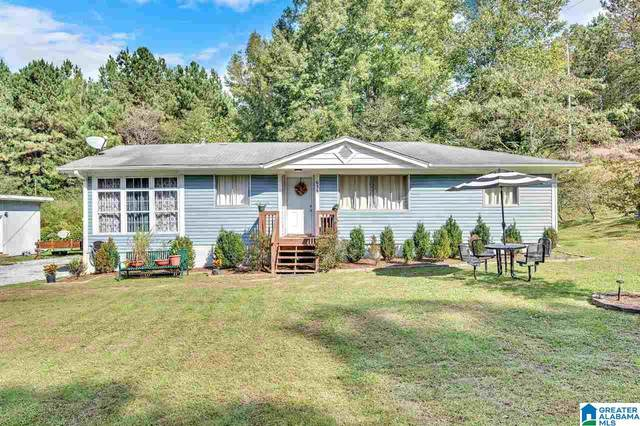 635 County Road 377, Chelsea, AL 35043 (MLS #1300827) :: Lux Home Group