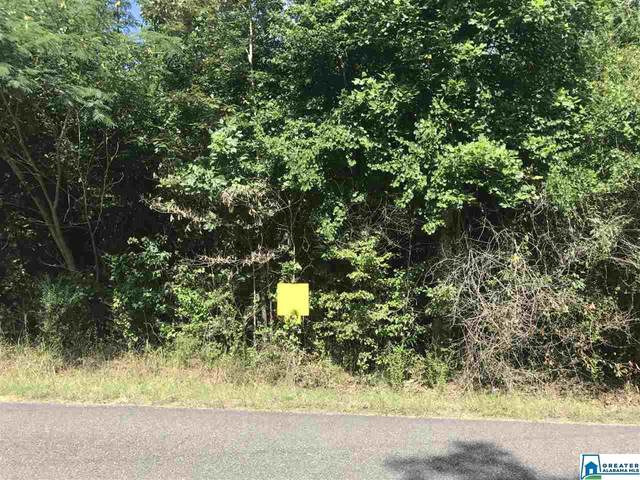 Lot 8 Mill Creek Rd #8, Nauvoo, AL 35578 (MLS #793234) :: LocAL Realty