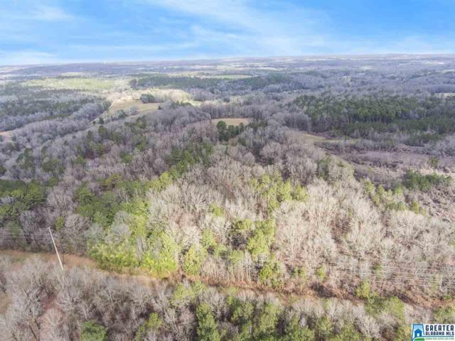 0 Spring Creek Rd 30 AC, Montevallo, AL 35115 (MLS #799598) :: Brik Realty