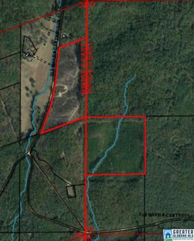 66 Acres Barton Rd 66 Acres, Marion, AL 36756 (MLS #800057) :: LIST Birmingham