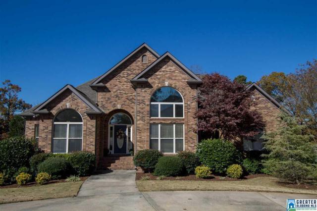 163 Clairmont Rd, Sterrett, AL 35147 (MLS #800587) :: LIST Birmingham