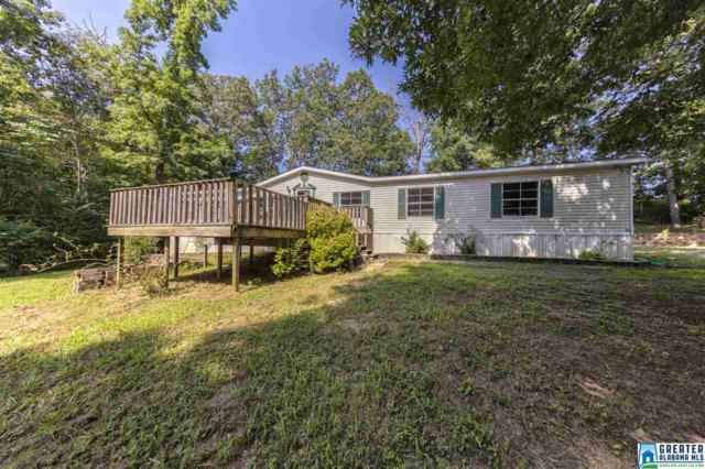 85 Hidden Valley Dr, Odenville, AL 35120 (MLS #804648) :: Williamson Realty Group