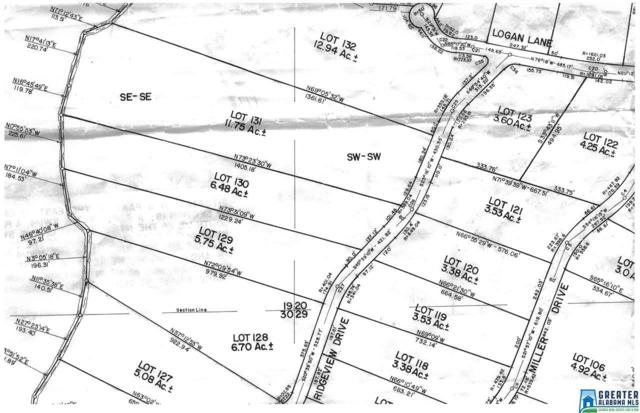 Ridge View Dr #130, Pell City, AL 35125 (MLS #806323) :: Josh Vernon Group