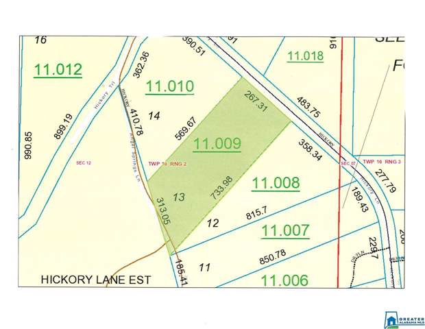 Hickory Ln #13, Odenville, AL 35125 (MLS #806329) :: Bailey Real Estate Group