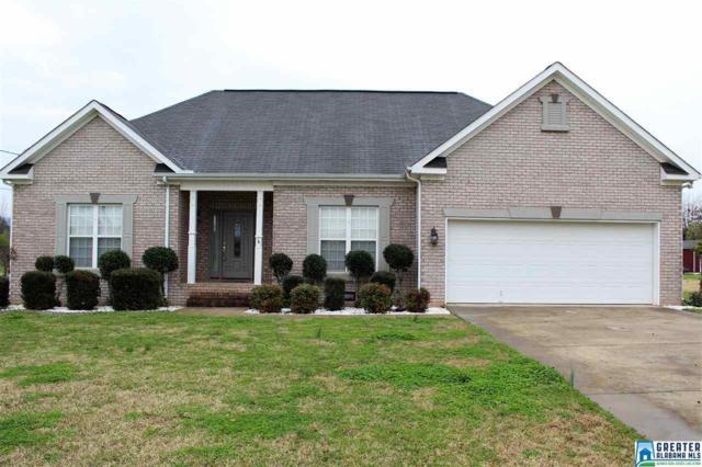 1113 James Hopkins Rd SW, Jacksonville, AL 36265 (MLS #806876) :: The Mega Agent Real Estate Team at RE/MAX Advantage
