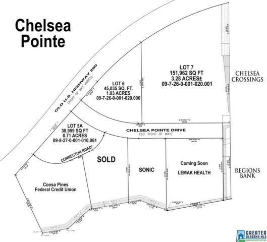 75 Chelsea Pointe Dr, Chelsea, AL 35043 (MLS #809758) :: JWRE Powered by JPAR Coast & County