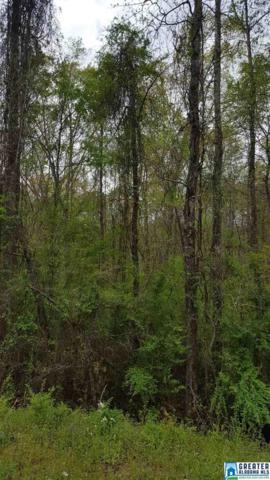6447 Old Tuscaloosa Hwy, Mccalla, AL 35111 (MLS #813036) :: LIST Birmingham