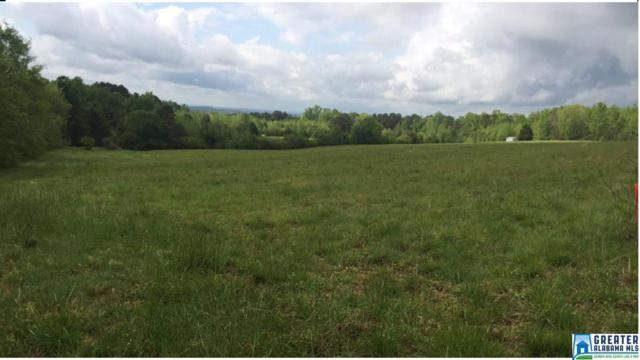 0 Runway Dr #0, Hayden, AL 35079 (MLS #814013) :: Williamson Realty Group