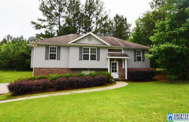 600 Magnolia Lake Ct, Odenville, AL 35120 (MLS #818158) :: Josh Vernon Group