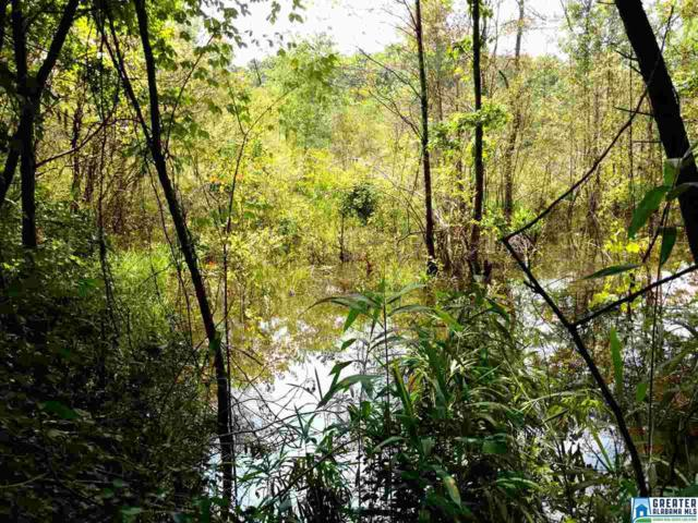 45+/- Blakes Ferry Rd 45 ACRES, Lineville, AL 36266 (MLS #819168) :: Brik Realty