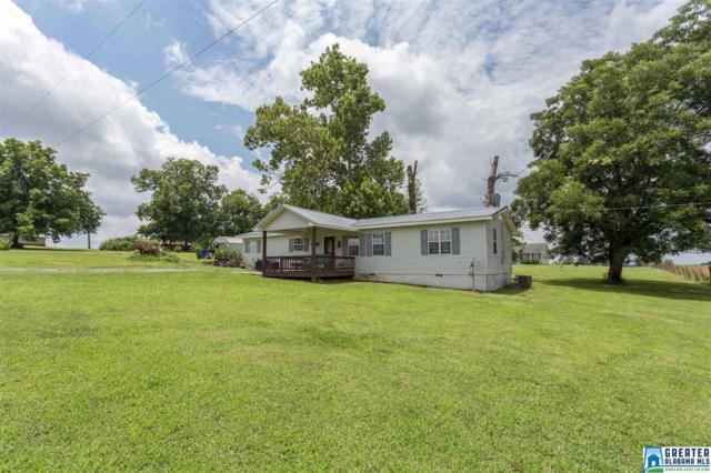 2511 Black Rd, Blountsville, AL 35031 (MLS #821231) :: Williamson Realty Group