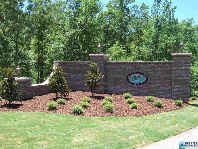 510 Applewood Ln #25, Odenville, AL 35120 (MLS #826467) :: Bailey Real Estate Group
