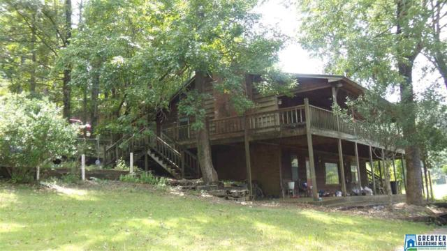 9075 Manley Vines Camp Rd, Bessemer, AL 35023 (MLS #829376) :: Josh Vernon Group