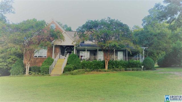 34 Co Rd 131, Crane Hill, AL 35053 (MLS #829560) :: Josh Vernon Group