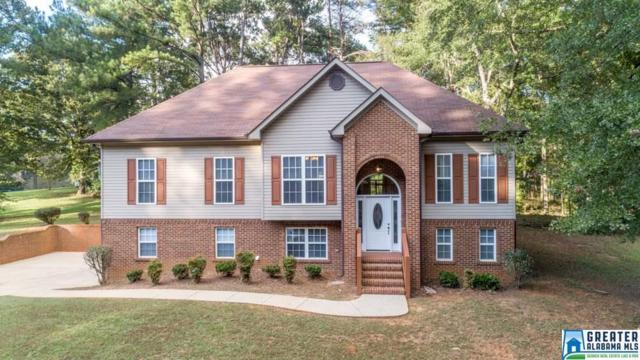 12553 Tannehill Pkwy, Mccalla, AL 35111 (MLS #830687) :: Josh Vernon Group