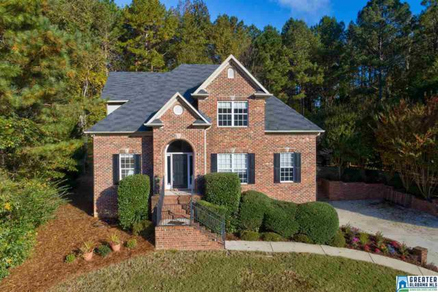104 Hackberry Cir, Chelsea, AL 35043 (MLS #833460) :: LIST Birmingham