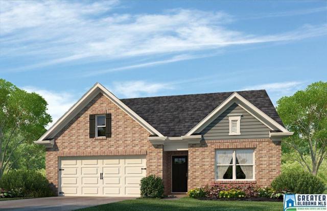 224 Belmont Way, Chelsea, AL 35043 (MLS #833713) :: The Mega Agent Real Estate Team at RE/MAX Advantage