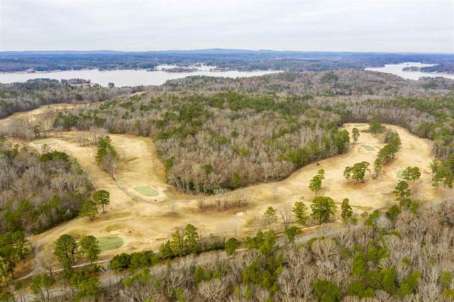 0 Constellation Dr #1, Alpine, AL 35014 (MLS #835841) :: Gusty Gulas Group