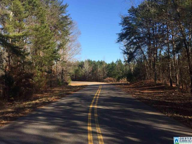 11109 Turner Rd 12 Acres, Tuscaloosa, AL 35401 (MLS #836177) :: Brik Realty