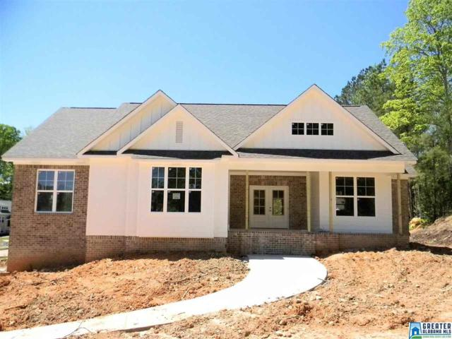 100 Joabs Way, Springville, AL 35146 (MLS #838422) :: Josh Vernon Group