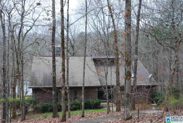 141 Deerwood Lake Dr, Harpersville, AL 35043 (MLS #839321) :: Josh Vernon Group