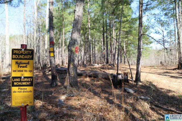 0 Co Rd 637 242+/- Acres, Lineville, AL 36266 (MLS #842098) :: Bentley Drozdowicz Group