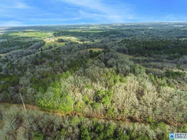 0 Spring Creek Rd 30 AC, Montevallo, AL 35124 (MLS #845281) :: LocAL Realty