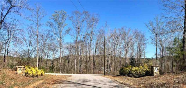 LOT 23 Paradise Point #23, Double Springs, AL 35553 (MLS #845602) :: Bentley Drozdowicz Group